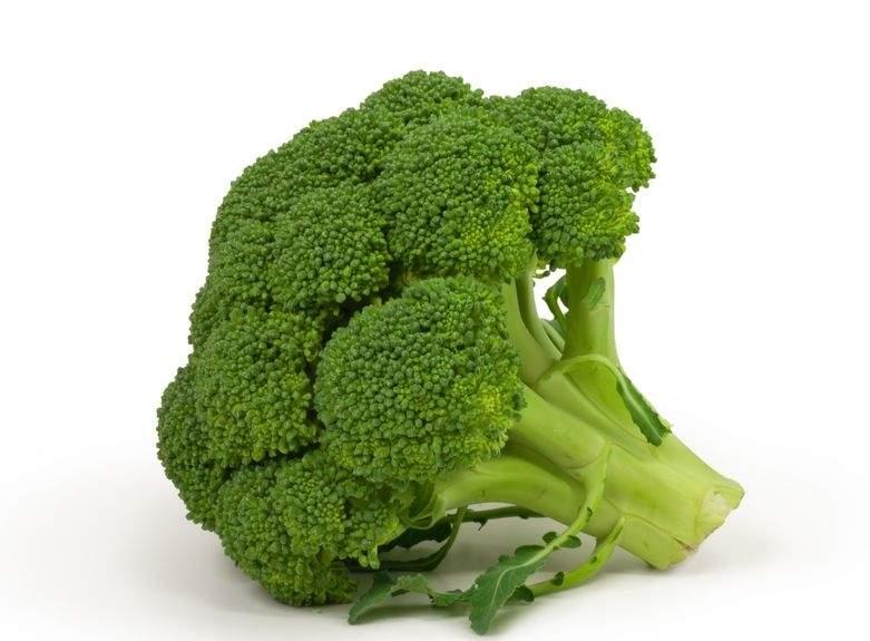 9 лучших растительных источников протеина